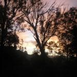 sunsetMontAlford