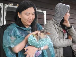 Lu with brushtail possum